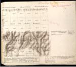 T22S, R8E, BLM Plat_319692_1 - Dec. 23, 1880 Survey