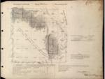 T22S, R9E, BLM Plat_319568_1 - June 16, 1893 Survey