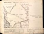 T20S, R8E, BLM Plat_319684_1 - Aug. 15, 1882 Survey