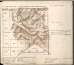 T19S, R10E, BLM Plat_317508_1 - Dec. 3, 1880 Survey