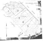 Book No. 247; T17S, R08-09E; T18S, R07-09E; T19S, R08E; MDM; San Lorenzo-Topo Rancho Map – 1915-1918