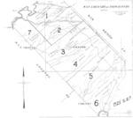 Book No. 247; T17S, R08-09E; T18S, R07-09E; T19S, R08E; MDM; San Lorenzo-Topo Rancho Map – 1925-1927