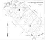 Book No. 247; T17S, R08-09E; T18S, R07-09E; T19S, R08E; MDM; San Lorenzo-Topo Rancho Map – 1928-1929