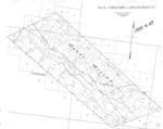 Book No. 245; T19S, R10E; T20S, R10-11E; T21S, R11E; MDM; San Lorenzo (Randall - Peach Tree) Rancho Map – 1928-1929
