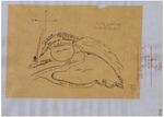 Aguajito - Diseños, GLO No. 282-A, APN 101, APN 103, Monterey County, and associated historical documents.