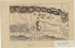 Agua Caliente [in four parts], Joseph Hooker, Diseño 739, GLO No. 67, Sonoma County, and associated historical documents.