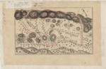 Agua Caliente [in four parts], C. P. Stone, Diseño 775, GLO No. 67, Sonoma County, and associated historical documents.