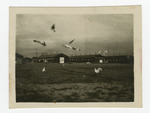 Barracks with birds at Tule Lake